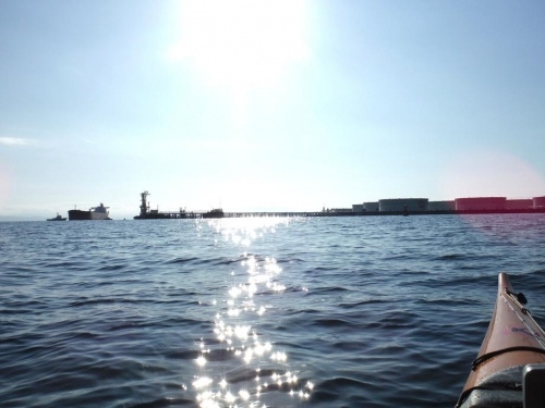 kayak 喜入 016