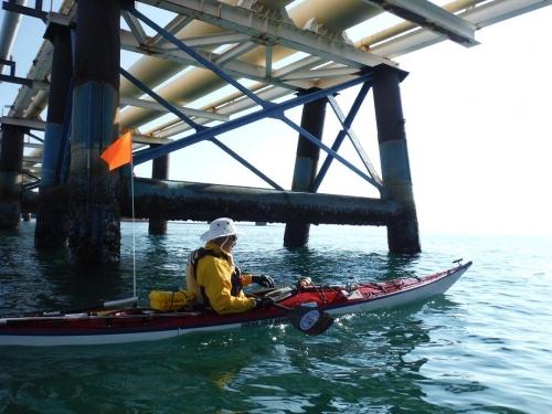 kayak 喜入 036