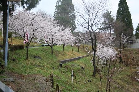 神戸セミナーハウス10