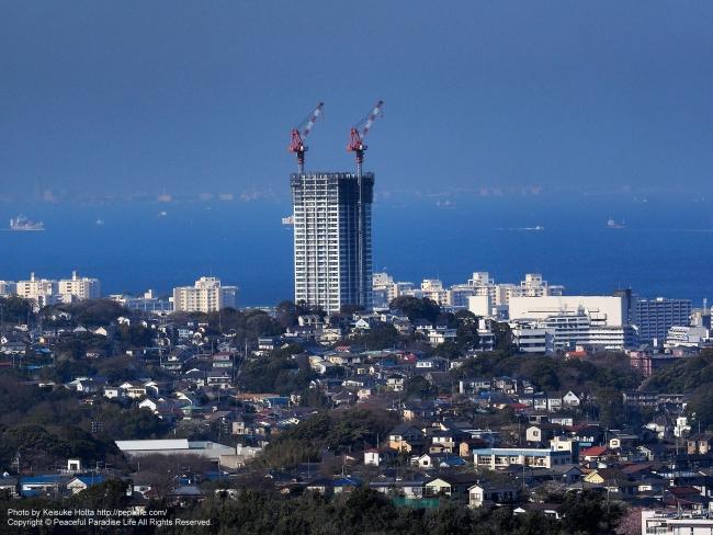 衣笠山公園の山頂展望台からの眺め