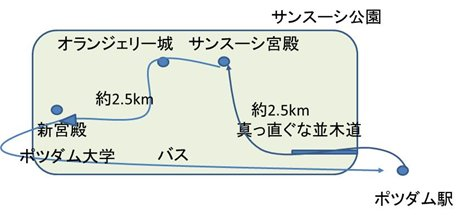 ssc33.jpg