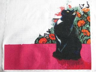 黒猫5月分