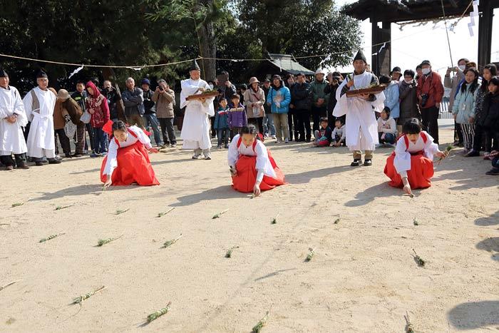 小泉神社 御田植祭4