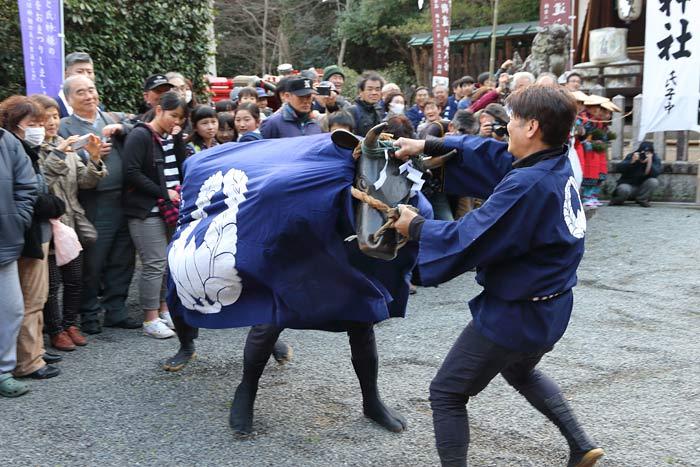長尾神社 おんだ祭2