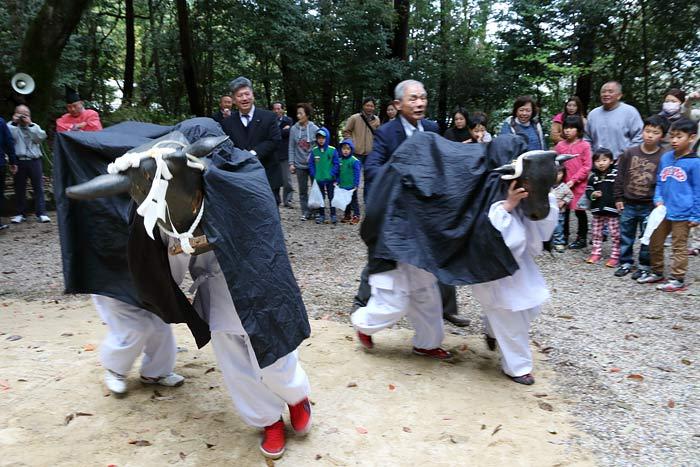 倭文神社 おんだ祭4