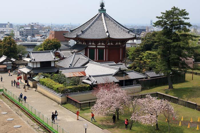 興福寺 中金堂4