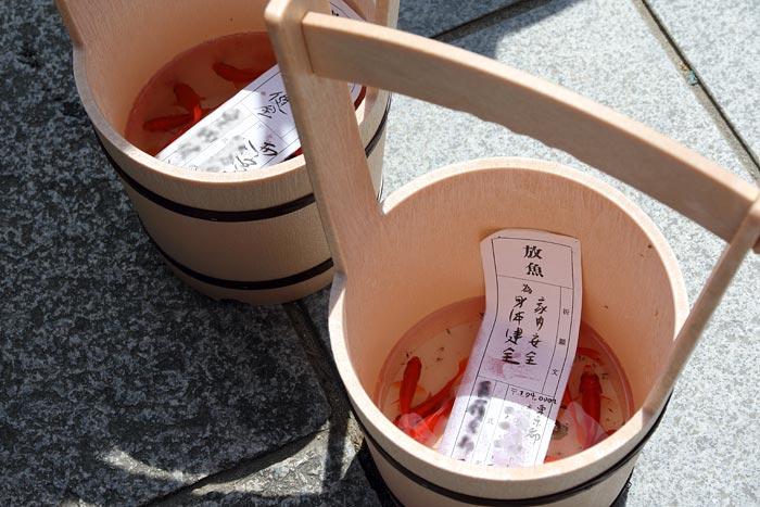 興福寺 放生会1