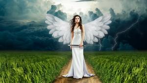 angel-749625_1280.jpg