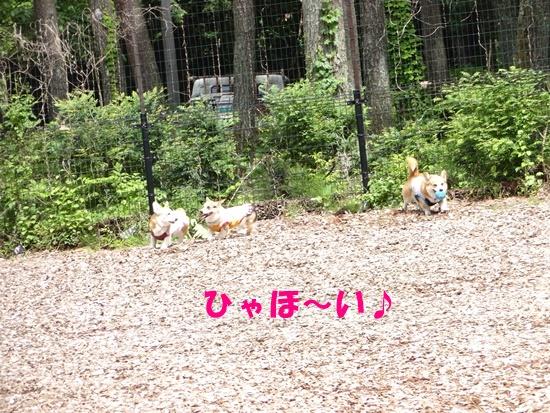 20150531 ピノホリお誕生日旅行DSC07040