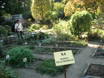 パドヴァ24植物園