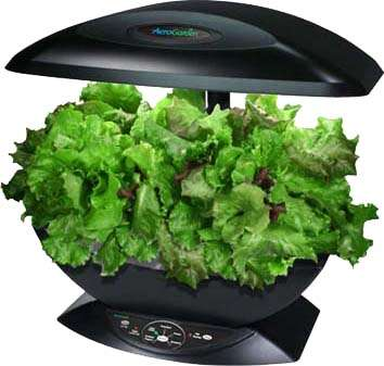 aerogarden-grow-your-own-garden-without-the-dirt.jpeg