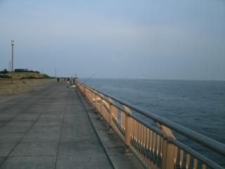 nishikouen0314b.jpg