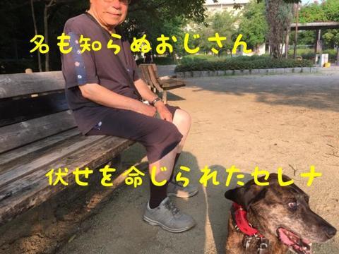 th_th_IMG_4009.jpg