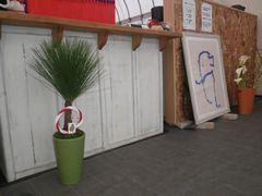 [写真]3周年のお祝いにいただいた松の鉢植えを受付カウンター前に飾った様子