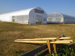 [写真]ポレポレ農園の竹馬コーナー(花壇の柵に立て掛けられた竹馬)