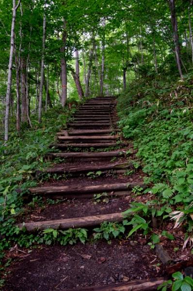 滝への階段-4663