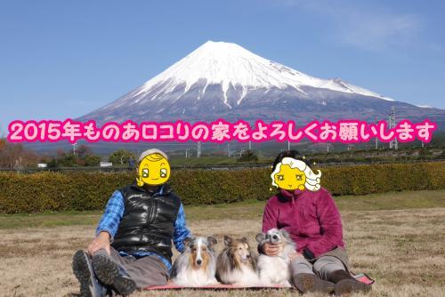 023_convert_20141231155559.jpg