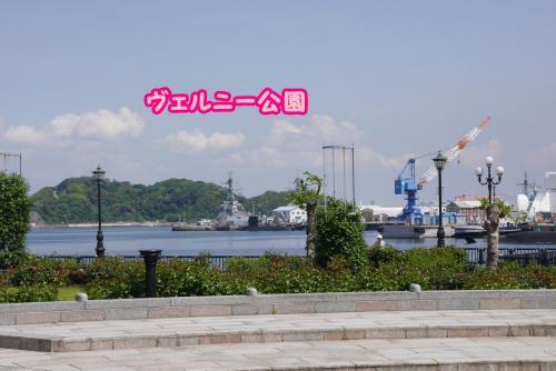 P1120194_convert_20150508180746.jpg