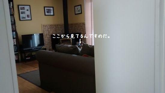 stalker6.jpg