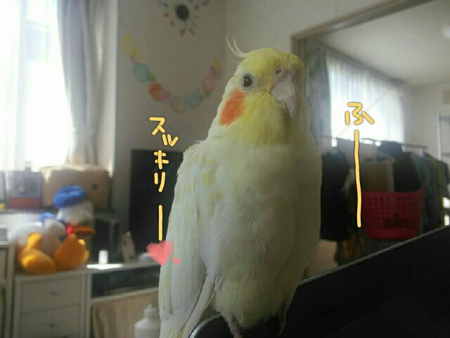 PicsPlay_1432348280917.jpg