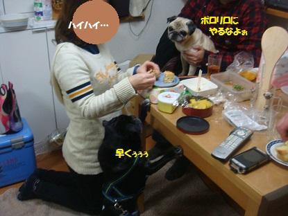 DSC02360_20150117145034a83.jpg
