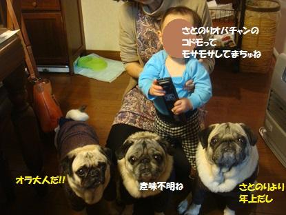 DSC02487_2015011015273193a.jpg