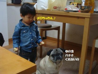 DSC03341_201502152101382b4.jpg