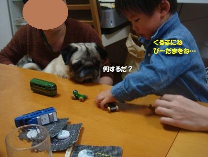 DSC03400_20150215144855b1d.jpg