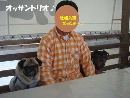 DSC04033_20150404220420136.jpg