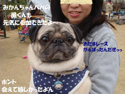 DSC04281_20111003031159_20150308125308740.jpg