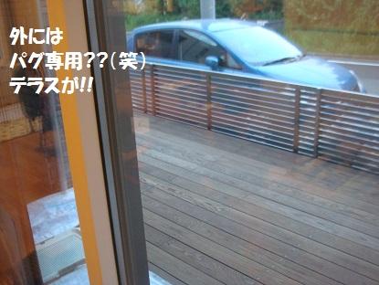 DSC05486_201505240225328db.jpg