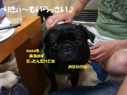 DSC07179_20121105201533_20150305222538693.jpg