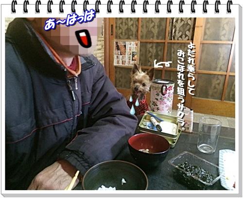 IMG_0801.jpg