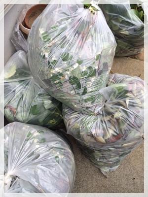 ゴミ袋9個分