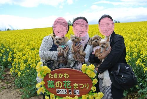 Nikon+054_convert_20150522132119.jpg