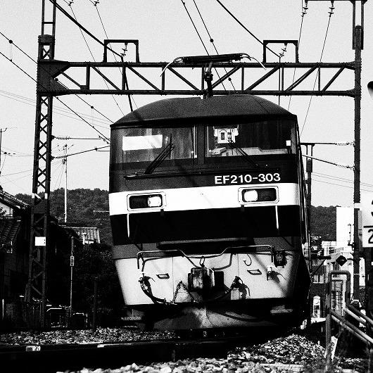 E5312295.jpg