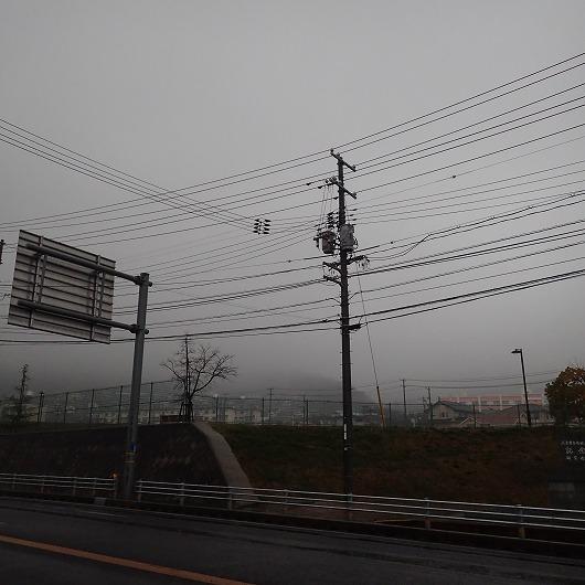 P3180003.jpg