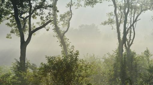 9470霧が谷15898
