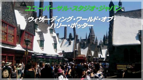 DSC_0338_convert_20150607202407.jpg