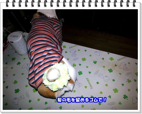 2184ブログNo4