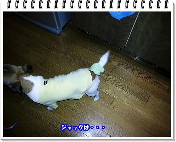 2184ブログNo6