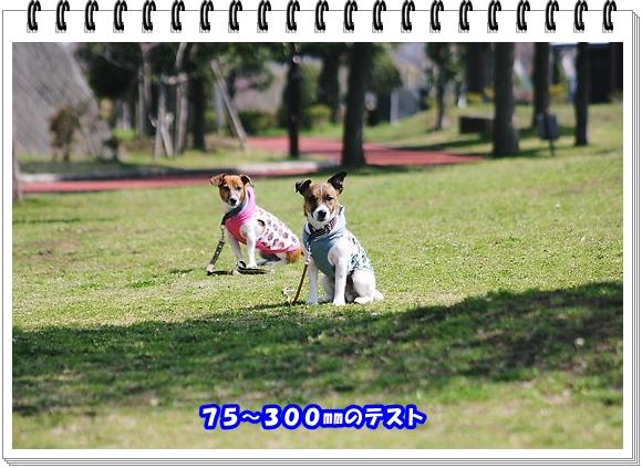 2203ブログNo6
