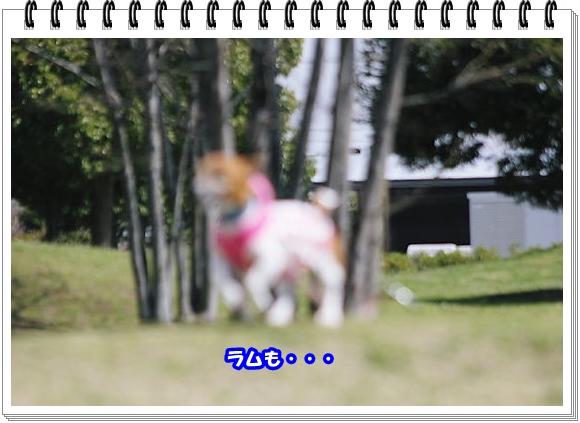 2203ブログNo9