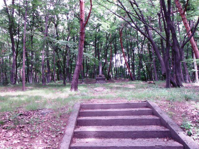 宇賀山砦 (5)