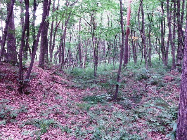 宇賀山砦 (17)