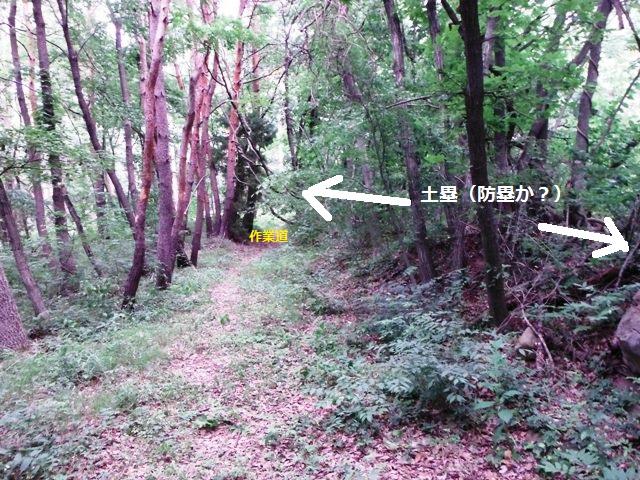 宇賀山砦 (26)