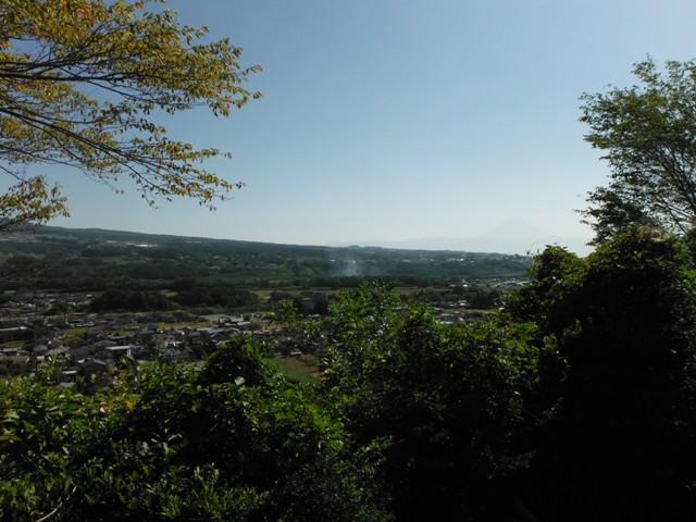 若神子城(北杜市) (20)