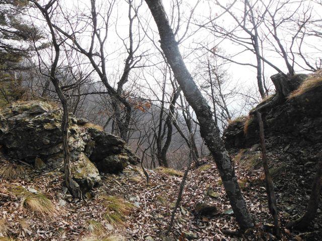 物見城(村上連珠砦群) (25)
