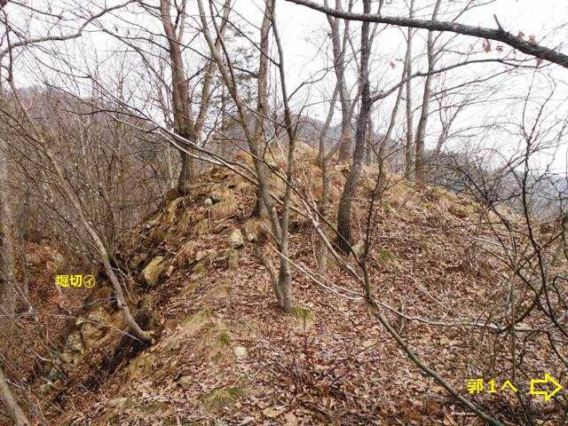 ケムリの城(村上連珠砦群) (39)