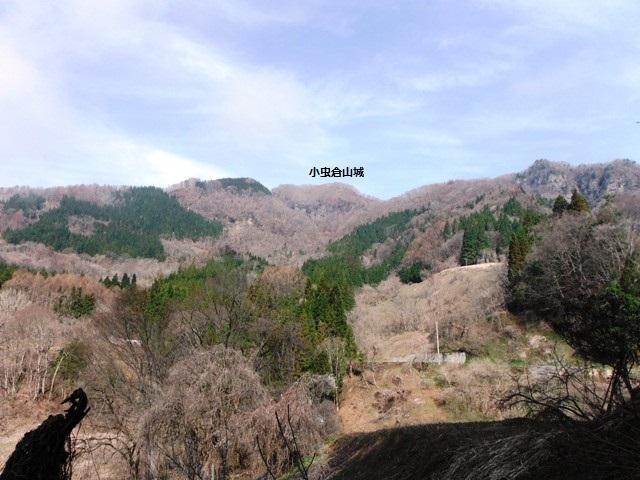 古屋敷城山城 (53)